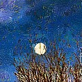 RC deWinter - Colorado Moon