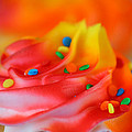 Darren Fisher - Colorful Cup Cake