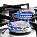 Cooker Gas Hob With Flames Burning by Fizzy Image