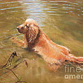 Colleen Quinn - Cooling Off