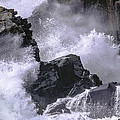 Marty Saccone - Crashing Wave at Quoddy