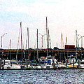 Susan Savad - Docked Boats Norfolk VA