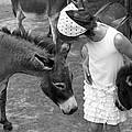 Brooke Ryan - Donkey Whisperer