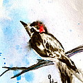 Beverley Harper Tinsley - Downy Woodpecker Sumi-e