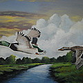 Frank Cochran - Ducks in Flight