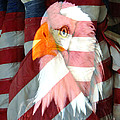 M and L Creations - Eagle and Flags