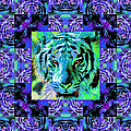 Eyes Of The Bengal Tiger Abstract Window 20130205m80 by Wingsdomain Art and Photography