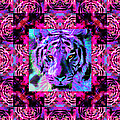 Eyes Of The Bengal Tiger Abstract Window 20130205p0 by Wingsdomain Art and Photography