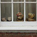 Family Of Teddy Bears On The Window. by Kiril Stanchev