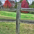 EricaMaxine  Price - Fence Among Color ...
