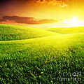Field Of Grass And Sunset by Boon Mee