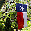 Luther  Fine Art - Flag -  Texas The Lone...