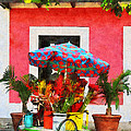 Susan Savad - Flower Cart San Juan...