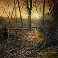 Robin-lee Vieira - Forgotten Path
