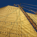 Marty Saccone - Gaff Rigged Mainsail