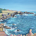 Asha Carolyn Young - Gerstle Cove Looking...