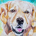 PainterArtist FINs husband Maestro - Golden retriever