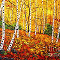 Graceful Birch Trees by Connie Tom