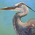Carol Schiff - Great Blue Heron by...