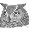 Patricia Hiltz - Great Horned Owl