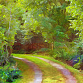 Painterly Images - Green Tracks