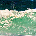 Green Wave Pacific Grove Ca  by Artist and Photographer Laura Wrede