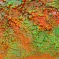 Julia Fine Art - Grungy Orange Abstract