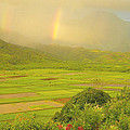 Stephen  Vecchiotti - Hanalei Valley Rainbows...
