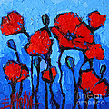 Mona Edulesco - Happy Coquelicots