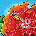 Adam Johnson - Hibiscus 06