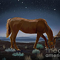 Sydne Archambault - Horse Beneath the Stars