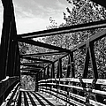 Sandi OReilly - Horse Pen Creek Bridge...