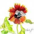 Linda Ginn - Indian Blanket Flower
