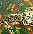 Cassandra Buckley - Jaguars in a Jaguar