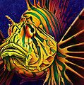 Scott Spillman - LionFish