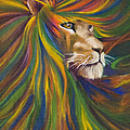 Kd Neeley - Lion