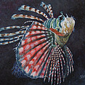 Michael Beckett - Lionfish