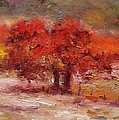 R W Goetting - Little red oak tree