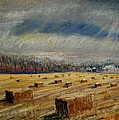 Tim  Swagerle - Lots of Bales