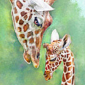 Jane Schnetlage - Loving Mother Giraffe2