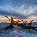 Debra and Dave Vanderlaan - Low Tide at Sunrise