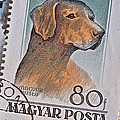 Bill Owen - Magyar Hungary Dog Stamp...