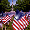 Rona Black - Memorial Day Flag Garden