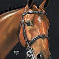 Heather Gessell - Miner - Bay Horse...