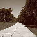 Missouri Route 66 2012 Sepia. by Frank Romeo