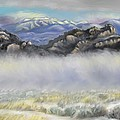 Dawn Senior-Trask - Misty Winter Morning
