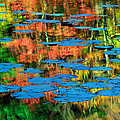 Inge Johnsson - Monet Reflection