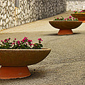 William Chizek - Montecassino Flower Pots
