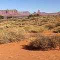 Peter Art Gallery  - Paintings Photos Prints Posters - Monument Valley Panorama...