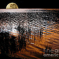 Kaye Menner - Moon catching a glimpse...